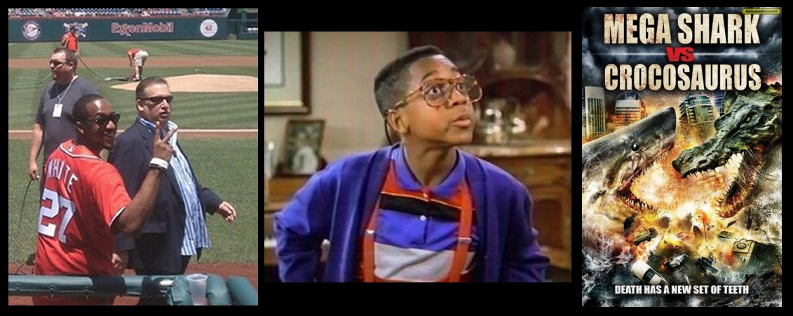 steve urkel washington nationals frame