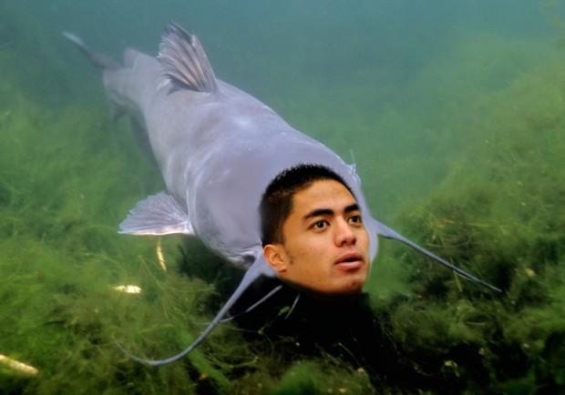 manti teo catfish