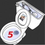 dubsism 5 year toilet