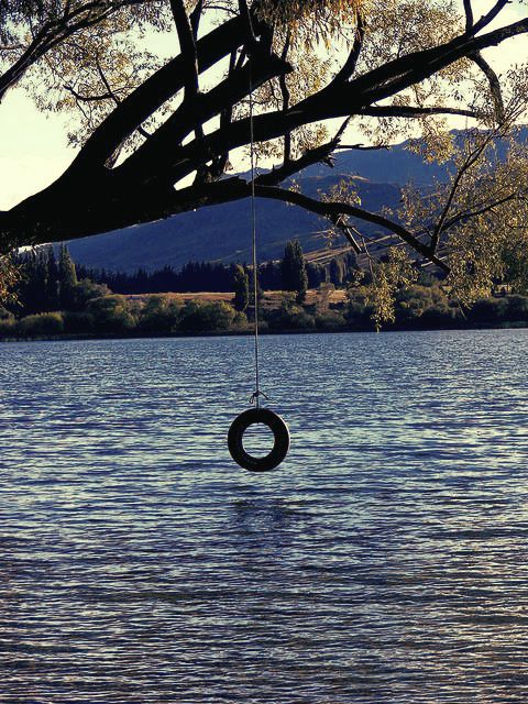 swimming hole with tire swing