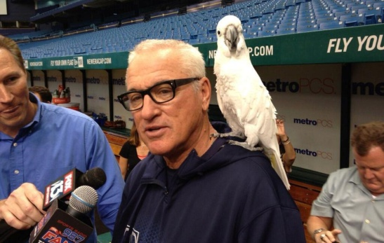 "Maddon: There's a fine line between ""creative"" and ""flaky."""