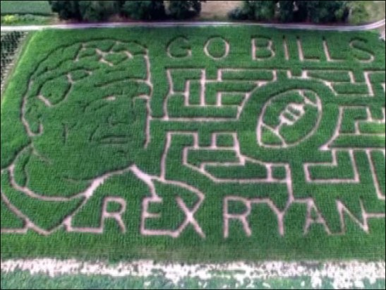 They already have a Rex Ryan corn maze. What more could you want?