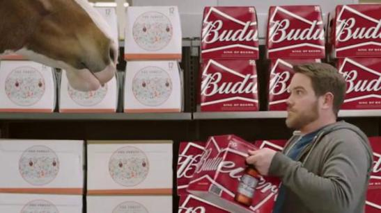 budweiser-super-bowl-2016-teaser-act-like-it-clydesdale-beer-run-large-9