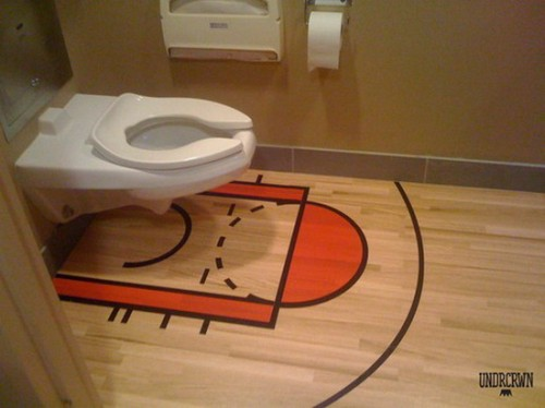 toilet hoop